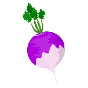 Image for Turnip